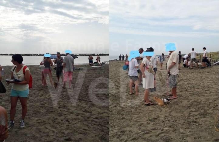 Bagni Di Casalborsetti : Multe ai proprietari di cani nella spiaggia di casal borsetti