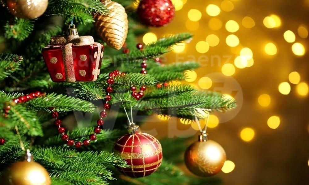 Immagini Per Natale.Natale Dalla Campigna Arriva Il Nuovo Albero Di Natale Al