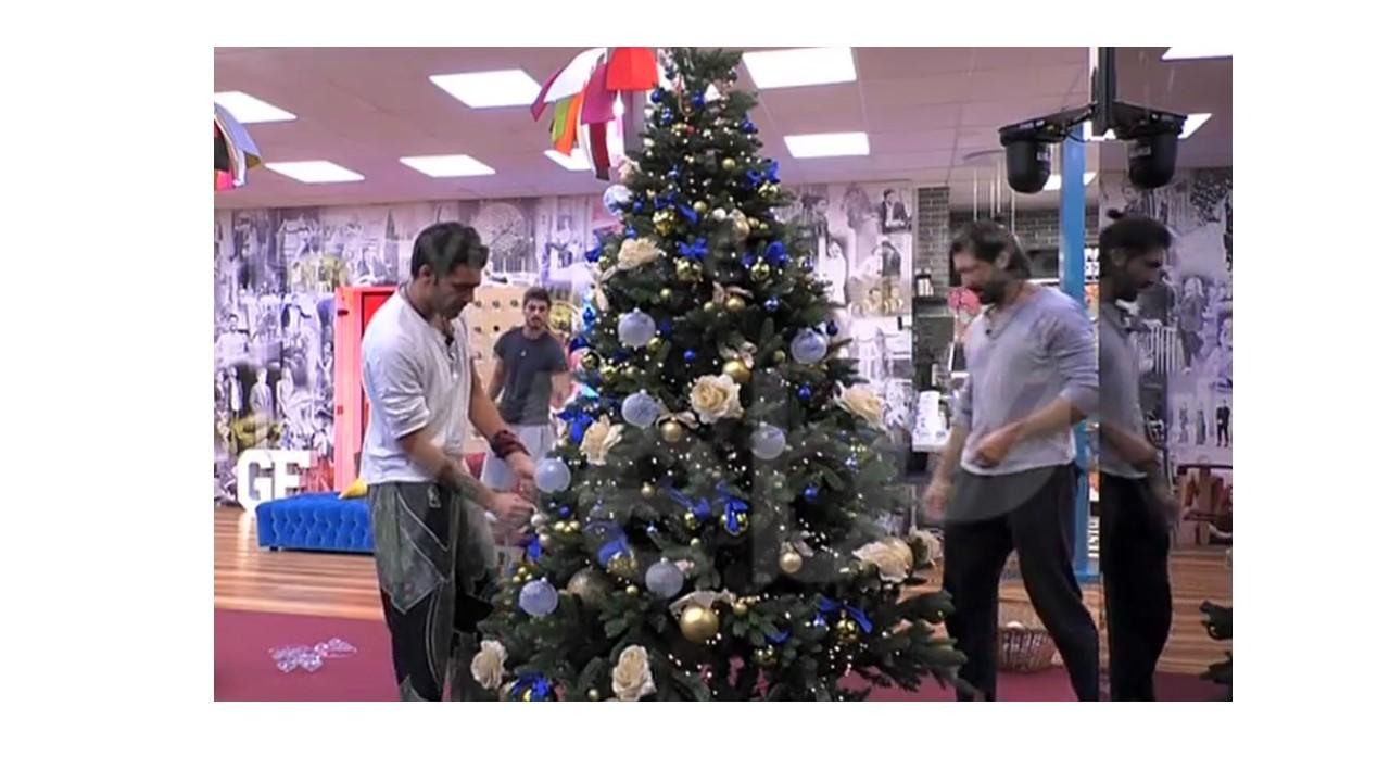 Albero Di Natale Grande.Nella Casa Del Grande Fratello Vip E Stato Allestito L Albero Con Le